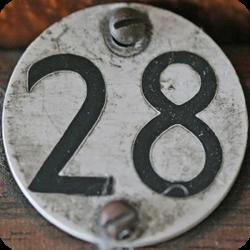 28-blog