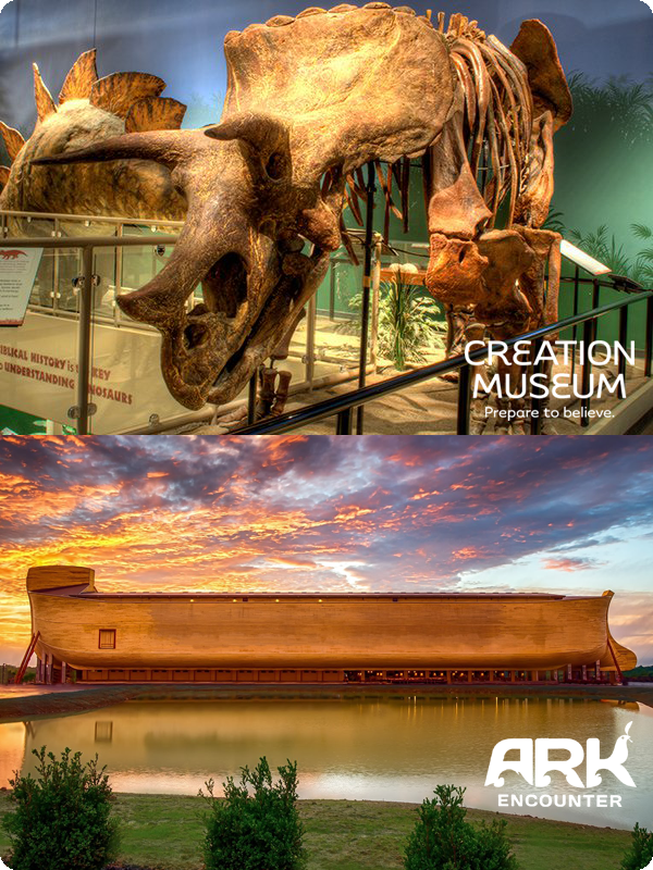 Creation Ark-twacc