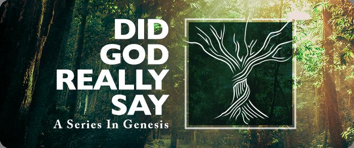 Did God Really Say-twacc1