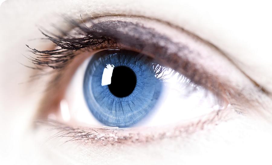 Eye-blog