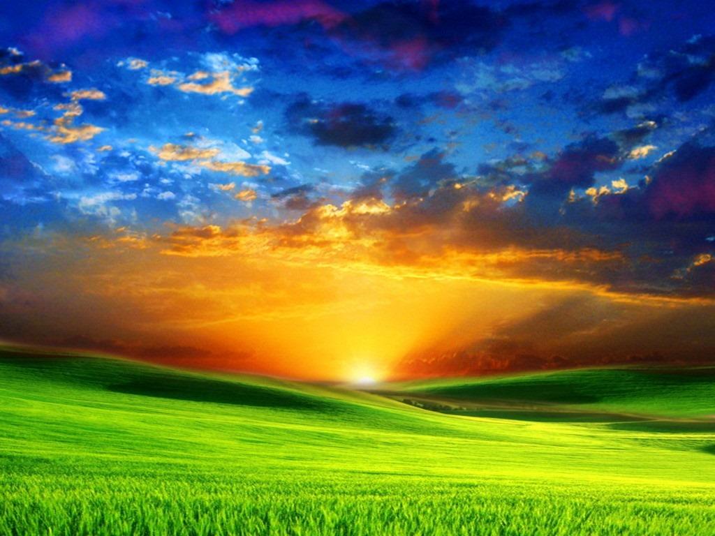 sunrise_on_green_meadow.jpg