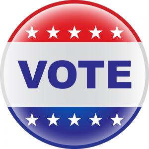 vote-icon-29801
